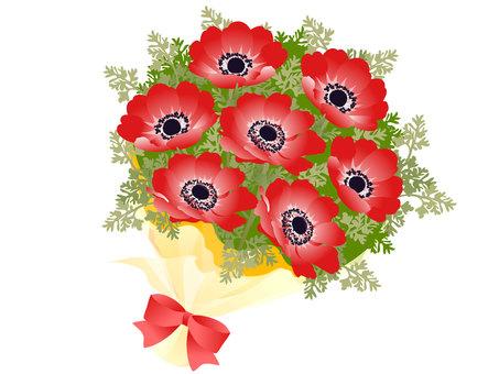 銀蓮花屬花