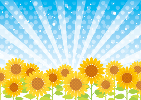 Sunflower and concentration line background 02