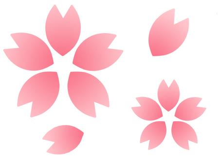 Sakura petal (Gradete)