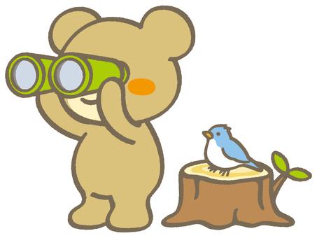Little Bear 12 - Bird Watching A