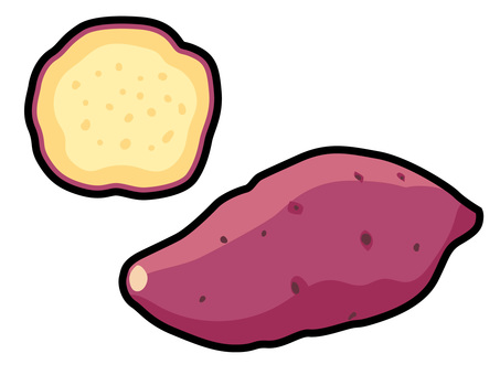 Ingredients _ vegetables _ sweet potato _ lines