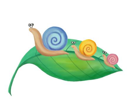 Parent and child 2 snails 2