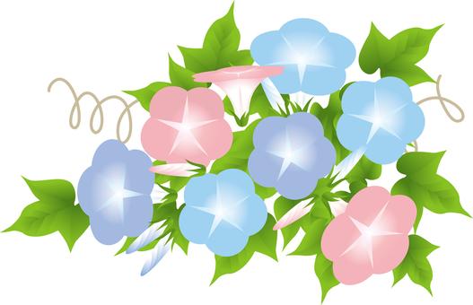 Pink & Blue Purple Asama 1