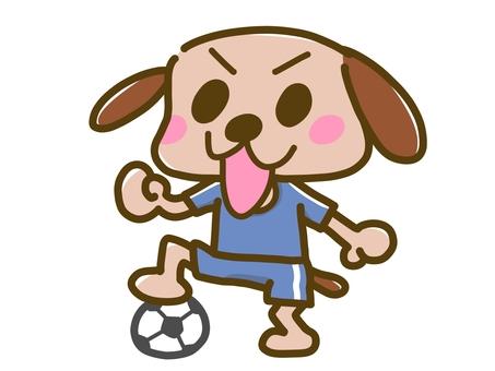 Inu football
