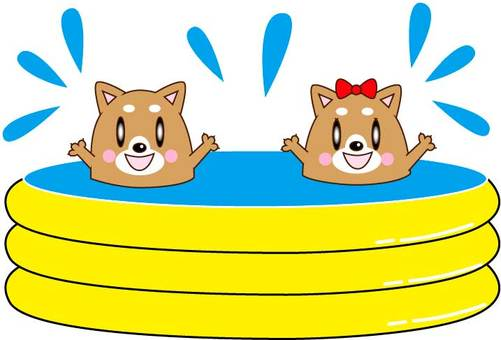 Dog couple playing in a vinyl pool