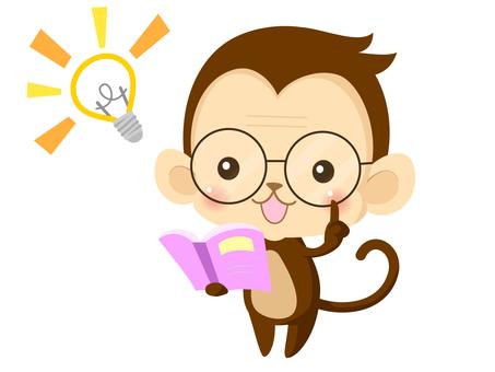 Monkey (study 4