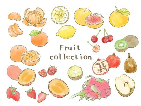 Various fruits Vol. 4