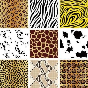 원활한 동물 무늬 9 종 세트
