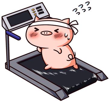 The pig's diet
