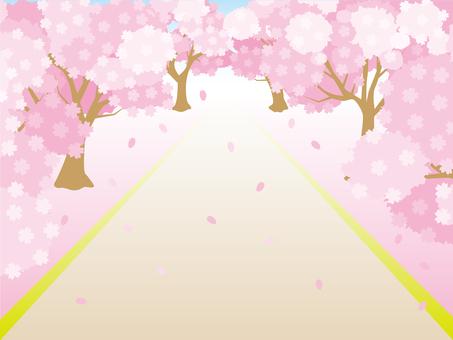 Sakura Namiki Frame