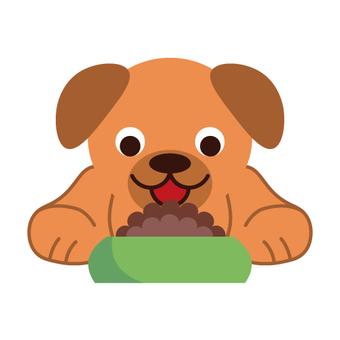 Image of dog eating pet food