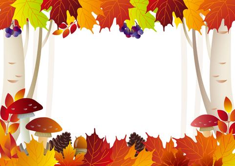 가을 숲의 프레임