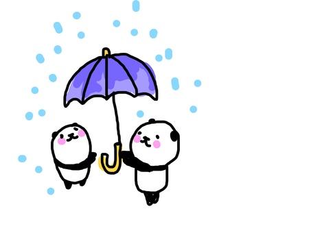 Umbrella and solder