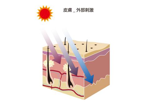 External skin irritation