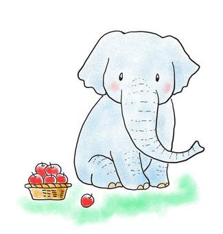 코끼리와 사과