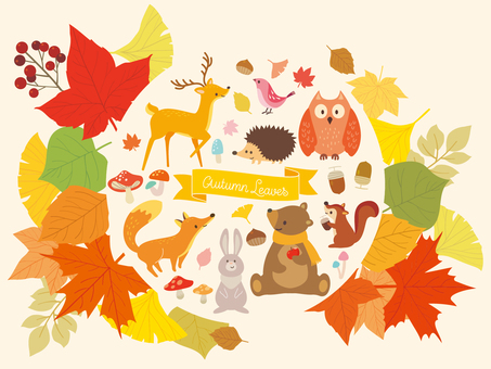 Illustration collection of autumn forest (8)