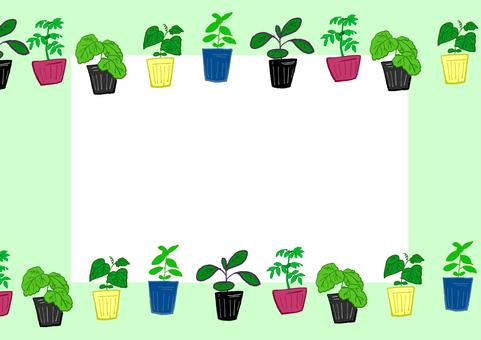 Vegetable seedling frame