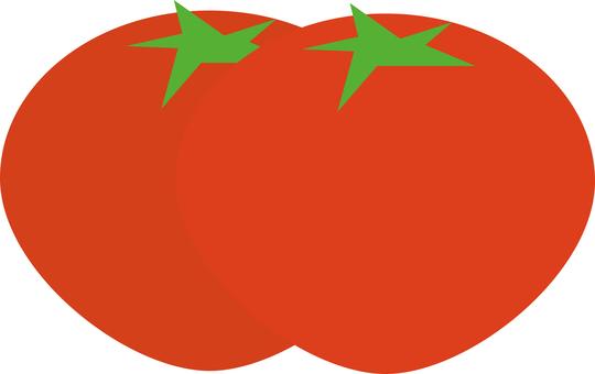 177 토마토 세트