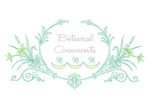Botanical Ornament Illustration 07