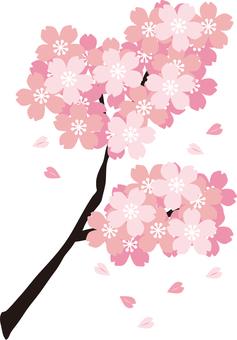벚꽃의 가지 그 6