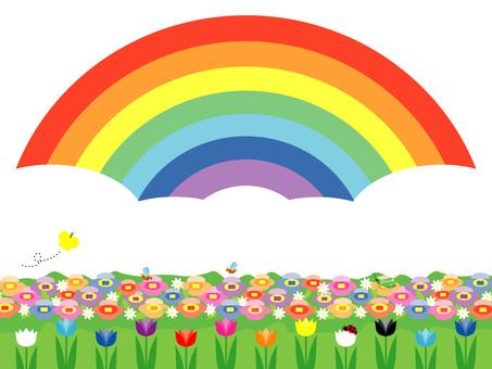 大彩虹和花園的背景(與透明度)