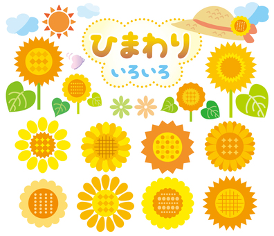 Sunflower material