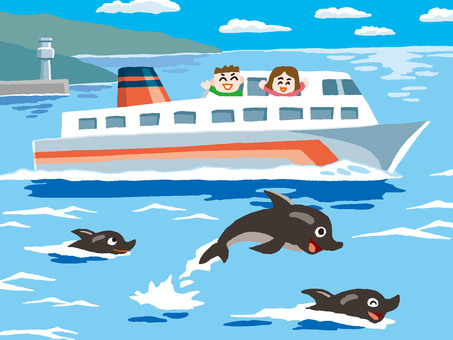 Dolphins and ferries