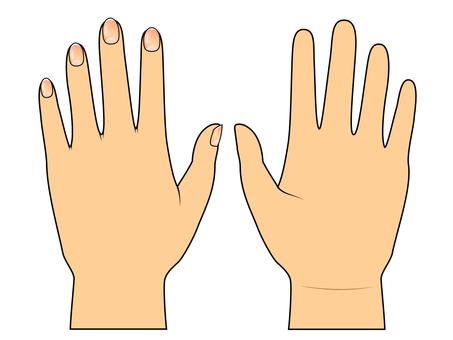 손 · 피부색 · 단순