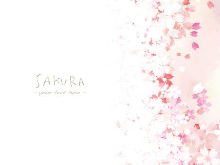 Cherry blossom frame ver 48