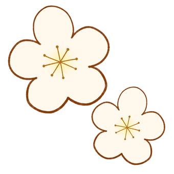 Plum blossom (two white)
