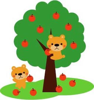 考慮蘋果的Kaguma
