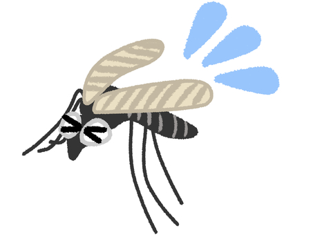 Mosquito mosquito