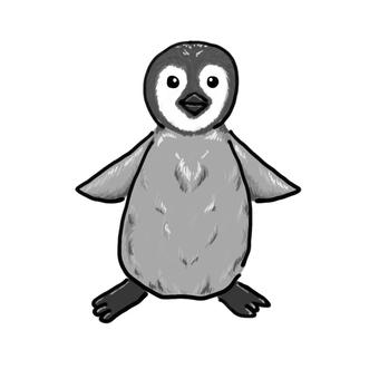 Emperor penguin child