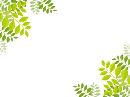 Green square frame