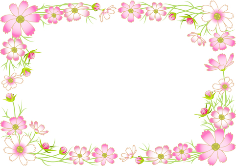 Cosmos frame background transparent ant