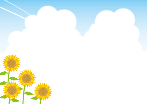 Background (sunflower and cloud cover)