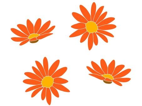 Flower illustration orange