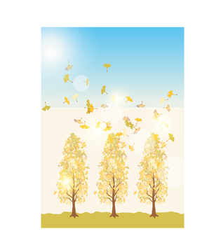 Ginkgo tree lined tree 2
