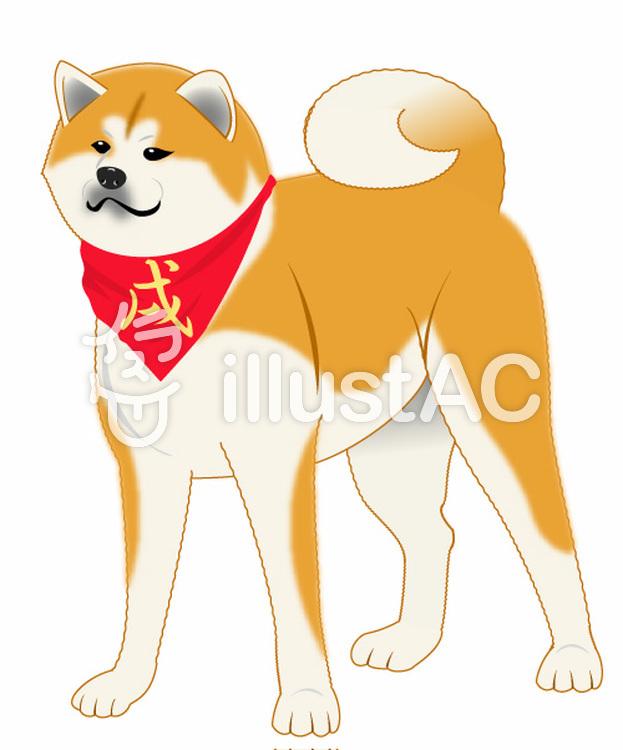 秋田犬のイラスト01のイラスト