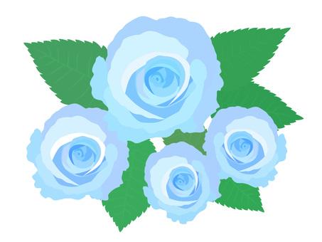 장미 블루
