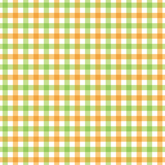 Gingham check 2