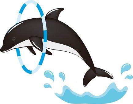 Dolphin round collar black