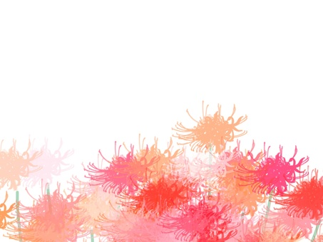 Higanki flower 4