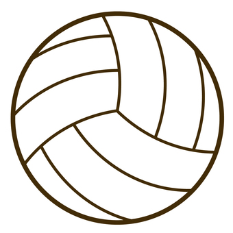Volleyball white