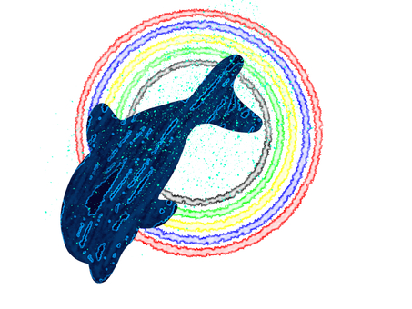 Five color wheel and dolphin