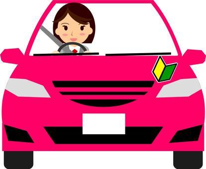 Beginner driver (female)