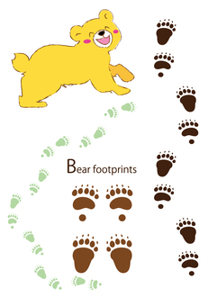 Bear footprint