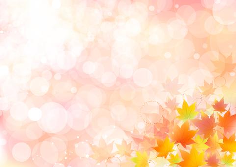Fall image material 49
