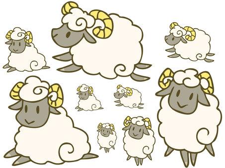 Sheep (black face)