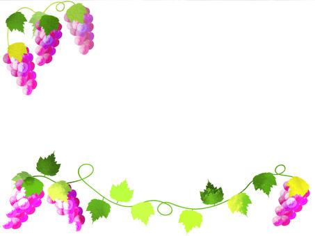 Grape frame 4